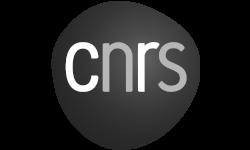 logo crns